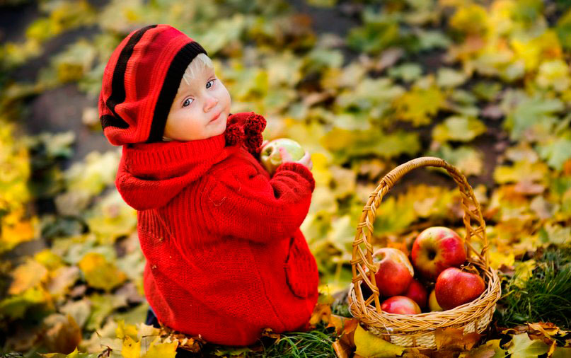 осенние загадки для малышей