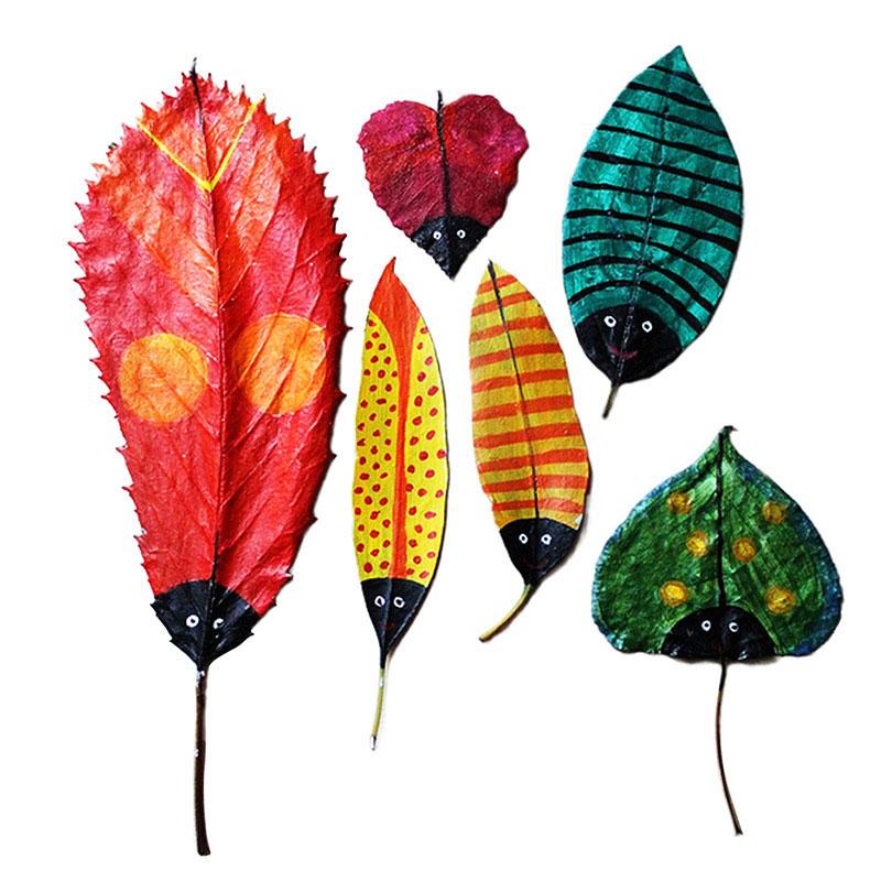 красивые осенние листочки