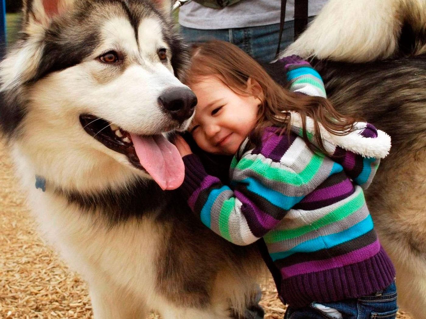 детские стихи про собак