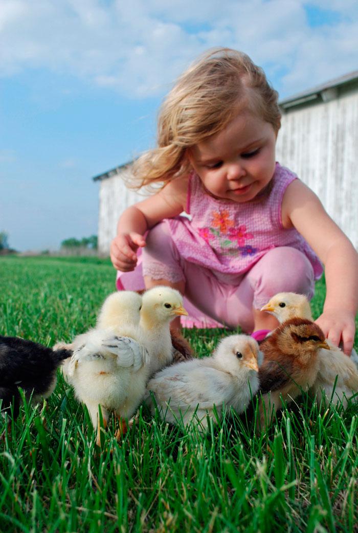 птички и дети