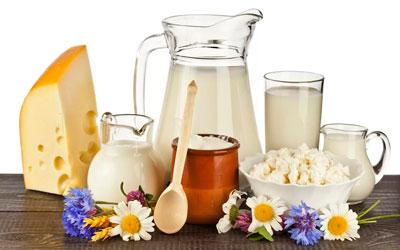 Молочные продукты сжигающие жир в организме человека