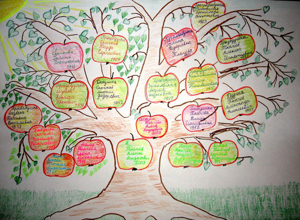 Как составить генеалогическое древо семьи: для детей