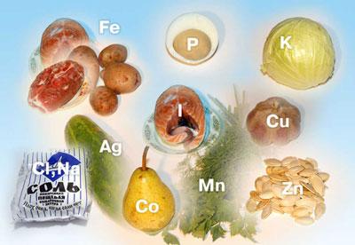 здоровое питание, основные секреты