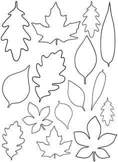 Шаблоны листьев для вырезания из бумаги 1