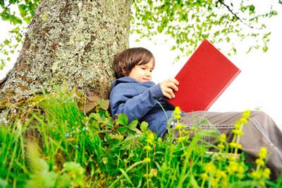 Стихи про деревья для детей дошкольного возраста