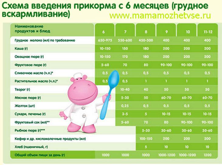 Прикорм ребенка: данные ВОЗ