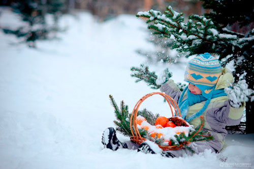 Красивые стихи для детей про зимний лес