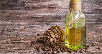 Кедровое масло для волос: советы по уходу