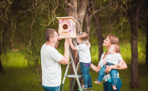 скворечники идея для фотоссесии семьей