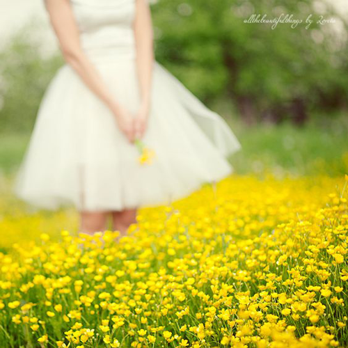 Идеи для фотосессии весной: в одуванчиках