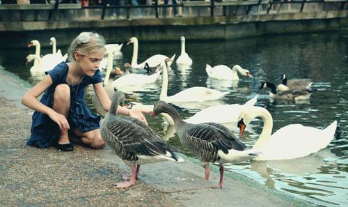 загадки про гуся для дошкольников