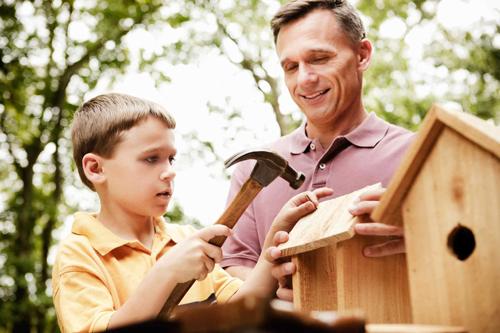 папа и сын делают скворечники весной