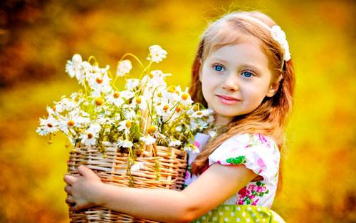 Интересные загадки про цветок ромашка