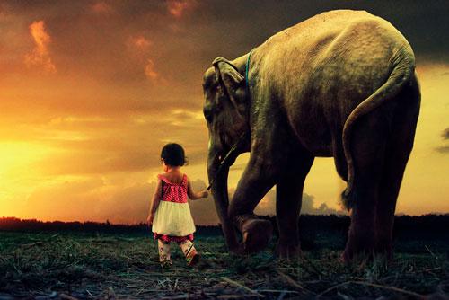 Загадка про слона для детей 5-7 лет