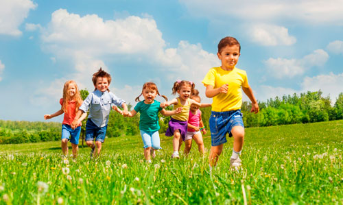 Интересные загадки про растения для детей