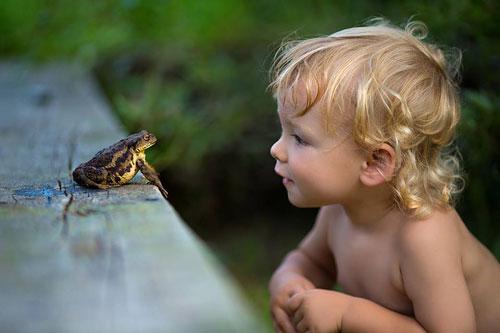 Загадки про лягушку для детей 5-7 лет
