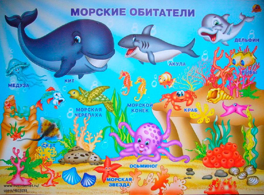 Загадки про морских обитателей