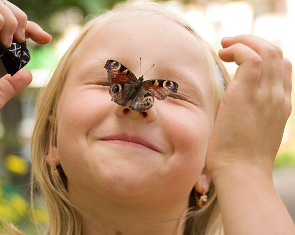 детские загадки про насекомых