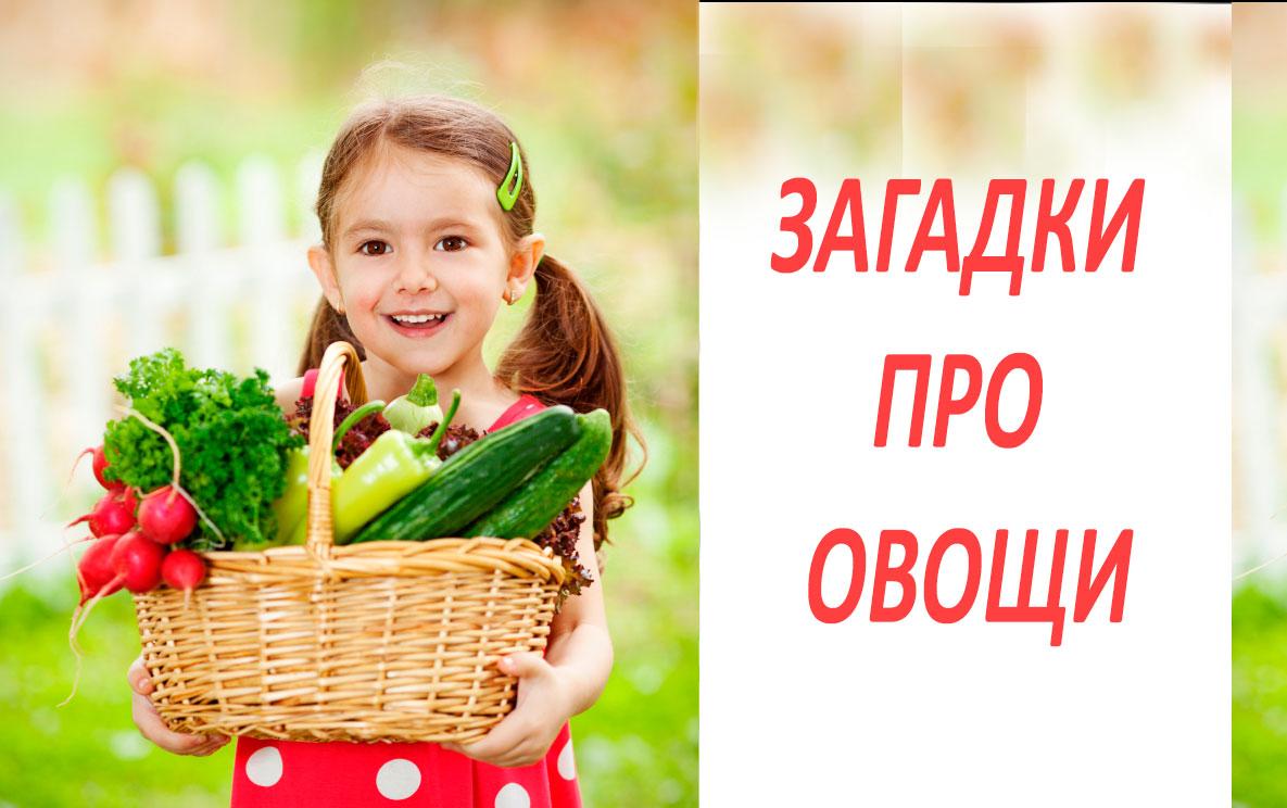 Загадки про овощи с ответами