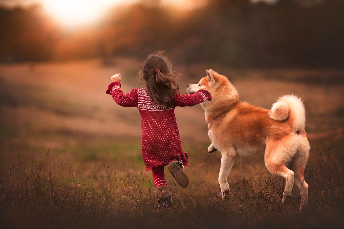 стихи про собаку для малышей