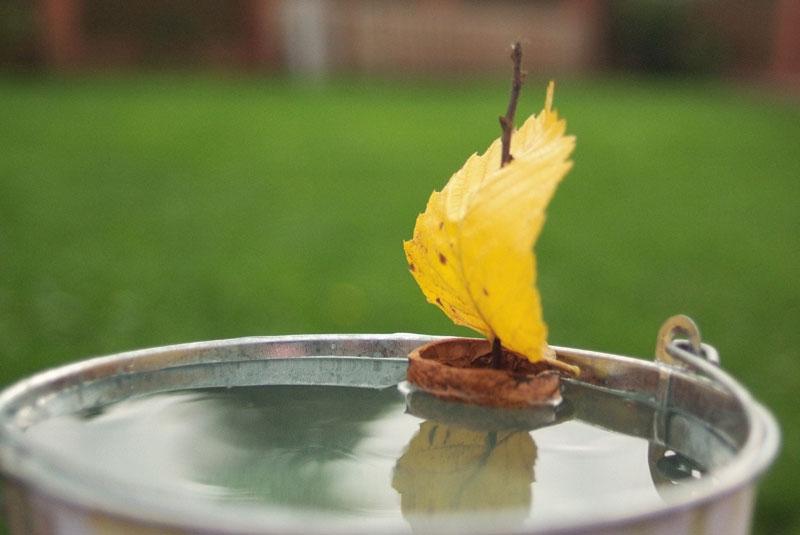 маленький кораблик из осеннего листа