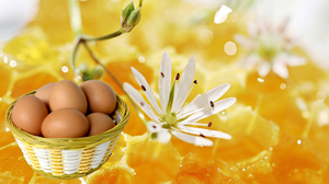 Эффективные маски против выпадения волос с желтком и медом
