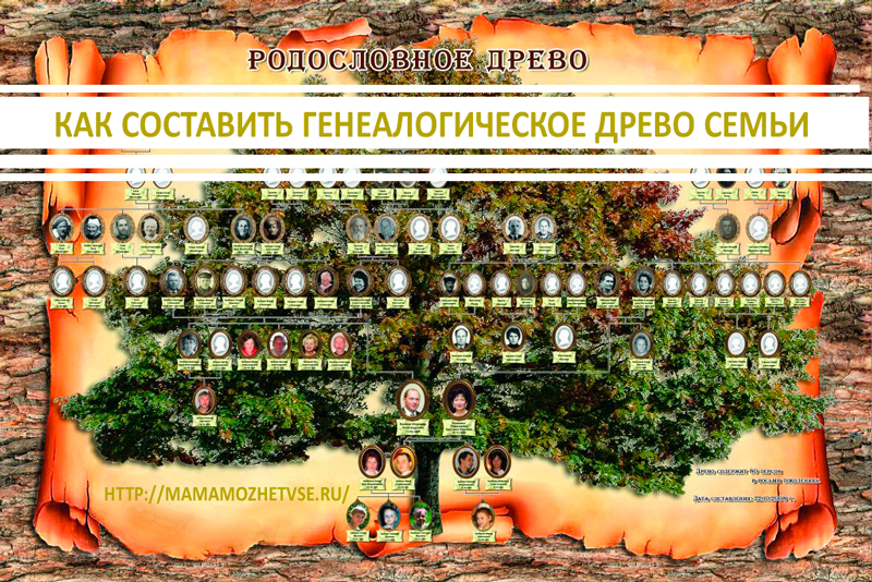 Как составить генеалогическое древо семьи 1