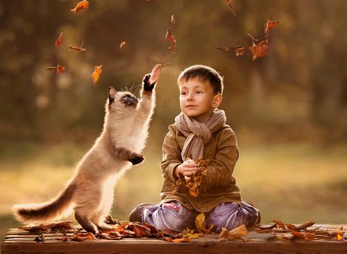 загадки про домашних животных для детей от 5 до 7 лет