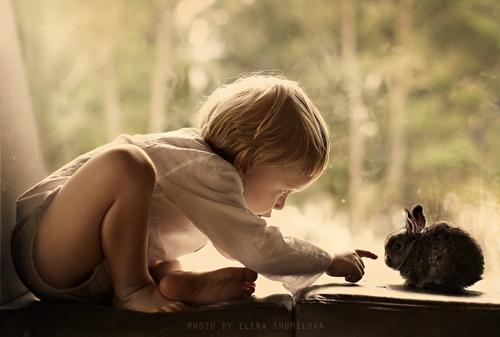 детские загадки про домашних животных 2