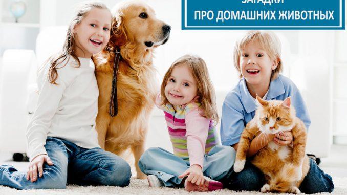 Загадки про домашних животных