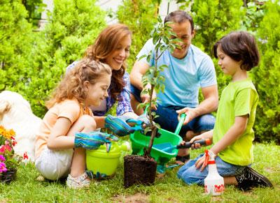 семья сажает сад в выходной