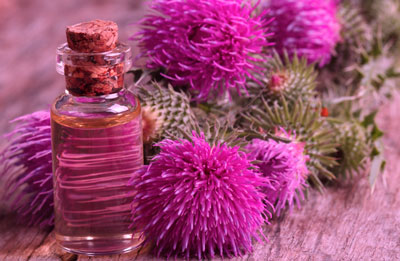 полезные свойства репейного масла для ресниц