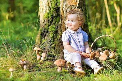 Стихи про грибы для детей школьного возраста