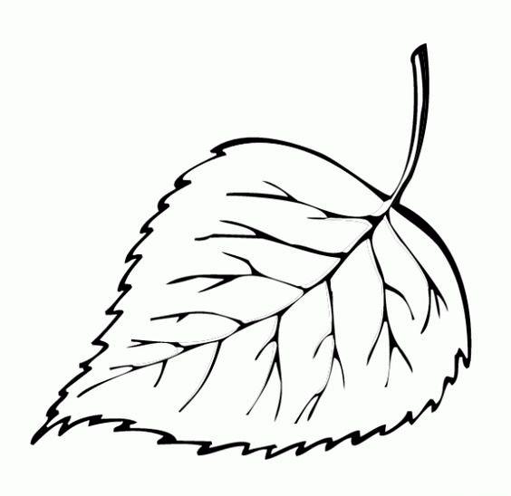 Шаблоны листьев для вырезания из бумаги для детей 5-6 лет