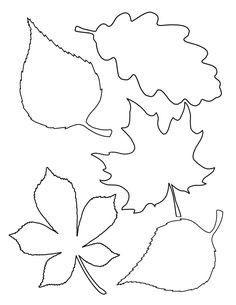 Шаблоны листьев для вырезания из бумаги для учащихся средней школы