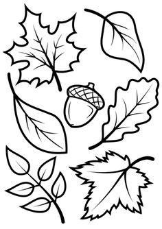 Шаблоны листьев для вырезания из бумаги для учащихся начальной школы