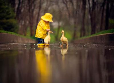 стихи про дождик для детей 2-3 лет