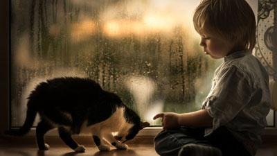 стихи про дождик для детей 5-6 лет
