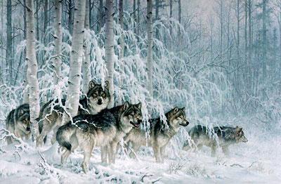 детские загадки про волка для детей