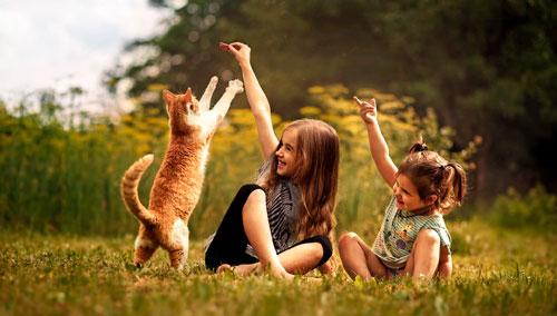 Загадки для детей про кошку
