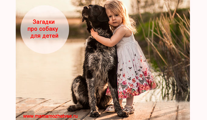 Загадки про собаку для детей