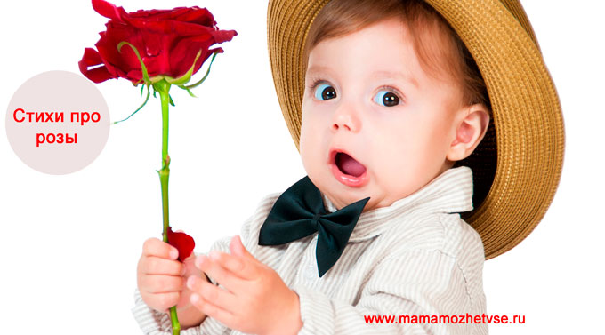 Стихи про розы для детей