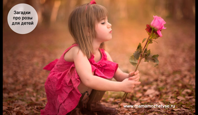 Загадки про розу для детей