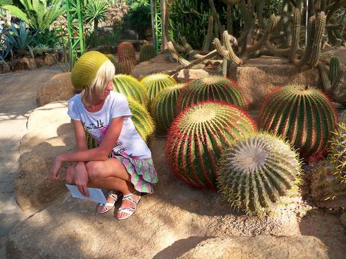 Интересные загадки про кактус для детей 7-12 лет