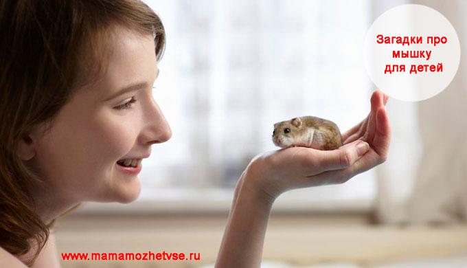 Загадка про мышку для детей