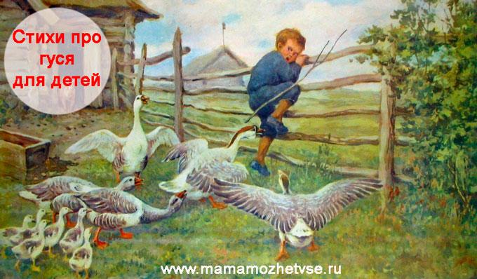 Стихи про гуся для детей