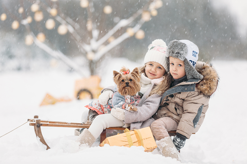 идеи для фотосессии всей семьей зимой 3