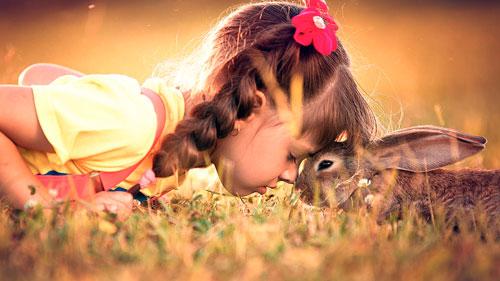 Красивые стихи про зайца для детей 7-9 лет