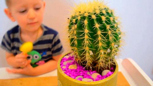 Интересные загадки про кактус для детей 5-7 лет