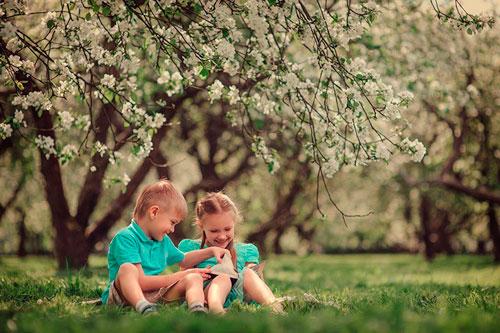Интересные загадки про яблони и яблоки для детей